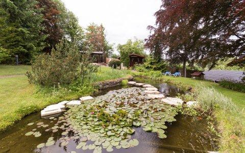 Die Teichanlage